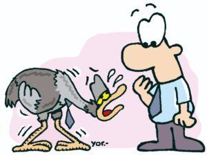 """Me siento avestrucito"" significa ""añeñandu'i"" en guaraní."